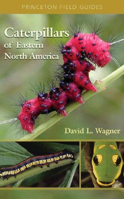 Caterpillars Of Eastern North America By Wagner, David L.